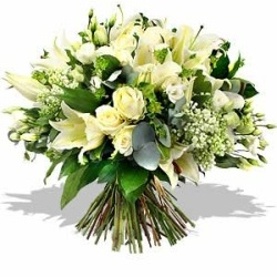 Fresh Flowers in a Water Filled Box from Flower Biz Christchurch